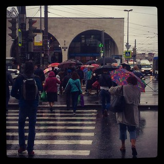 Rainy day on the go, for #365days project, 229/365, #погодашепчетзайминовыпей