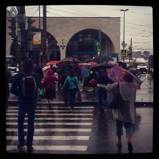 Rainy day on the go, for #365days project, 229/365, #погодашепчетзайминовыпей