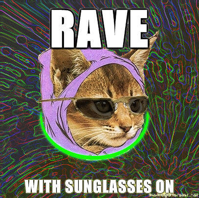 Hipster-Kitty-Rave-with-sunglasses-on