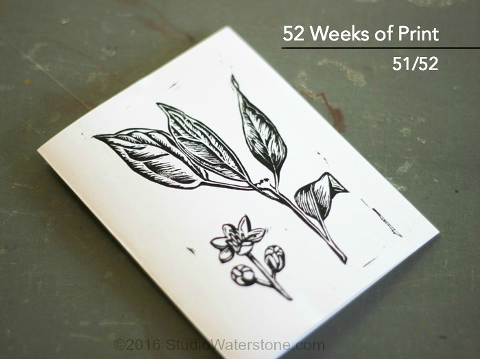 52 Weeks of Print: 51/52 Botanical