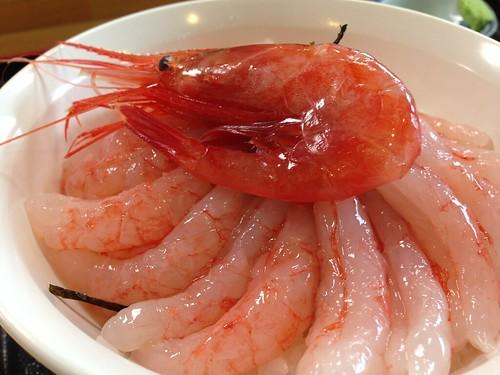 hokkaido-haboro-kitanonishinyasan-sweet-shrimp-don01