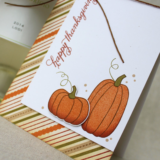 Happy Thanksgiving Pumpkins Close Up