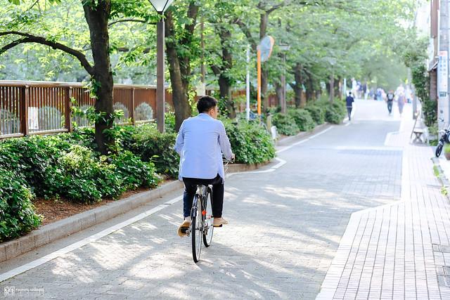 初夏,東京遊拍 | 17