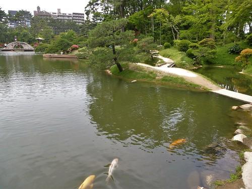 jp16-hiroshima-shukkei-en (13)