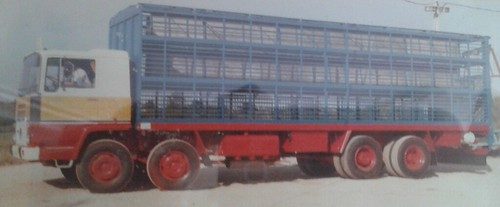 camió Enric Ibars 2