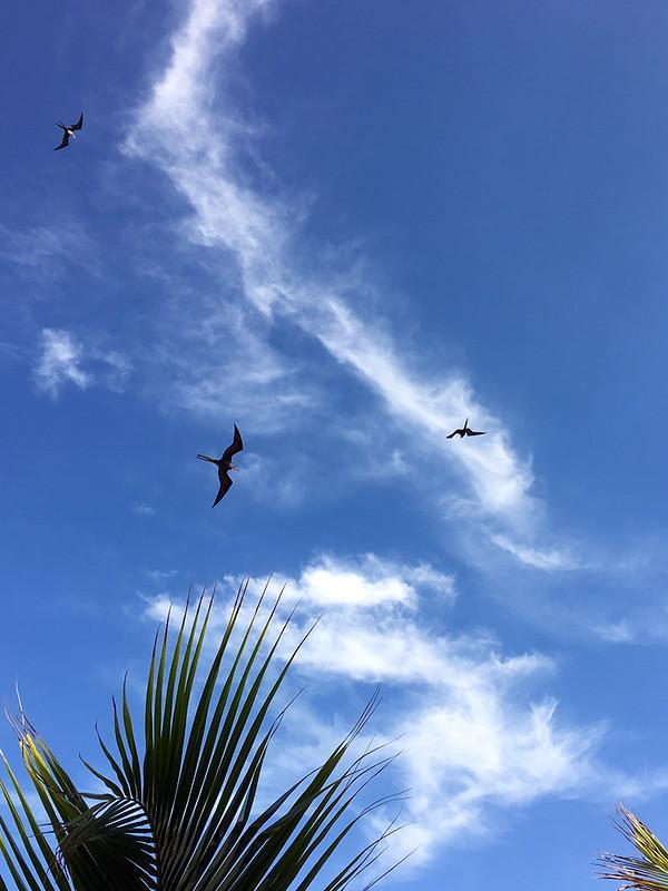 MAFR over Costa Maya