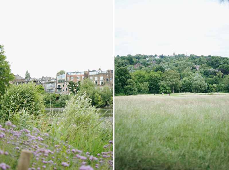 hampstead heath 5