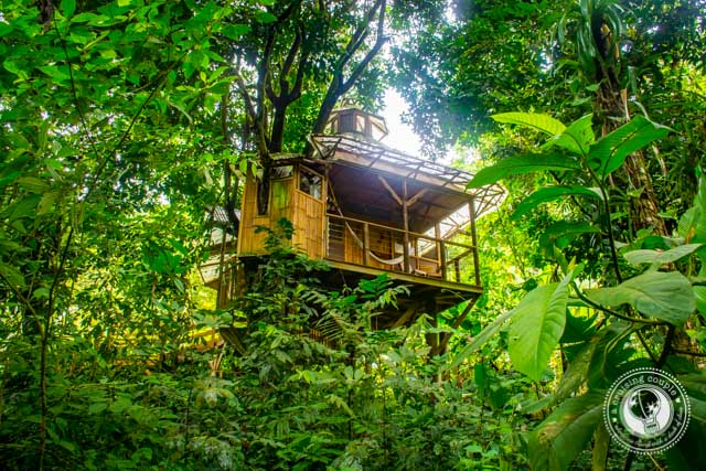 Treehouse at Finca Bellavista in Costa Rica