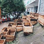 Lightbe planters, social housing by MakerBay, Nicolas Konefal