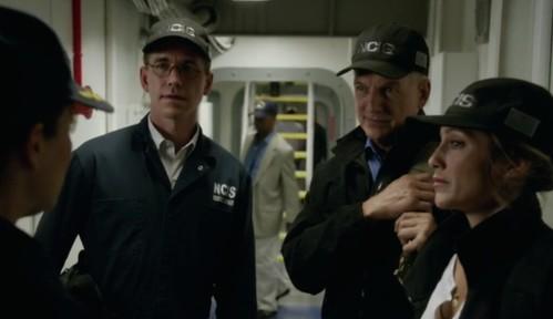 Palmer, Gibbs and Quinn
