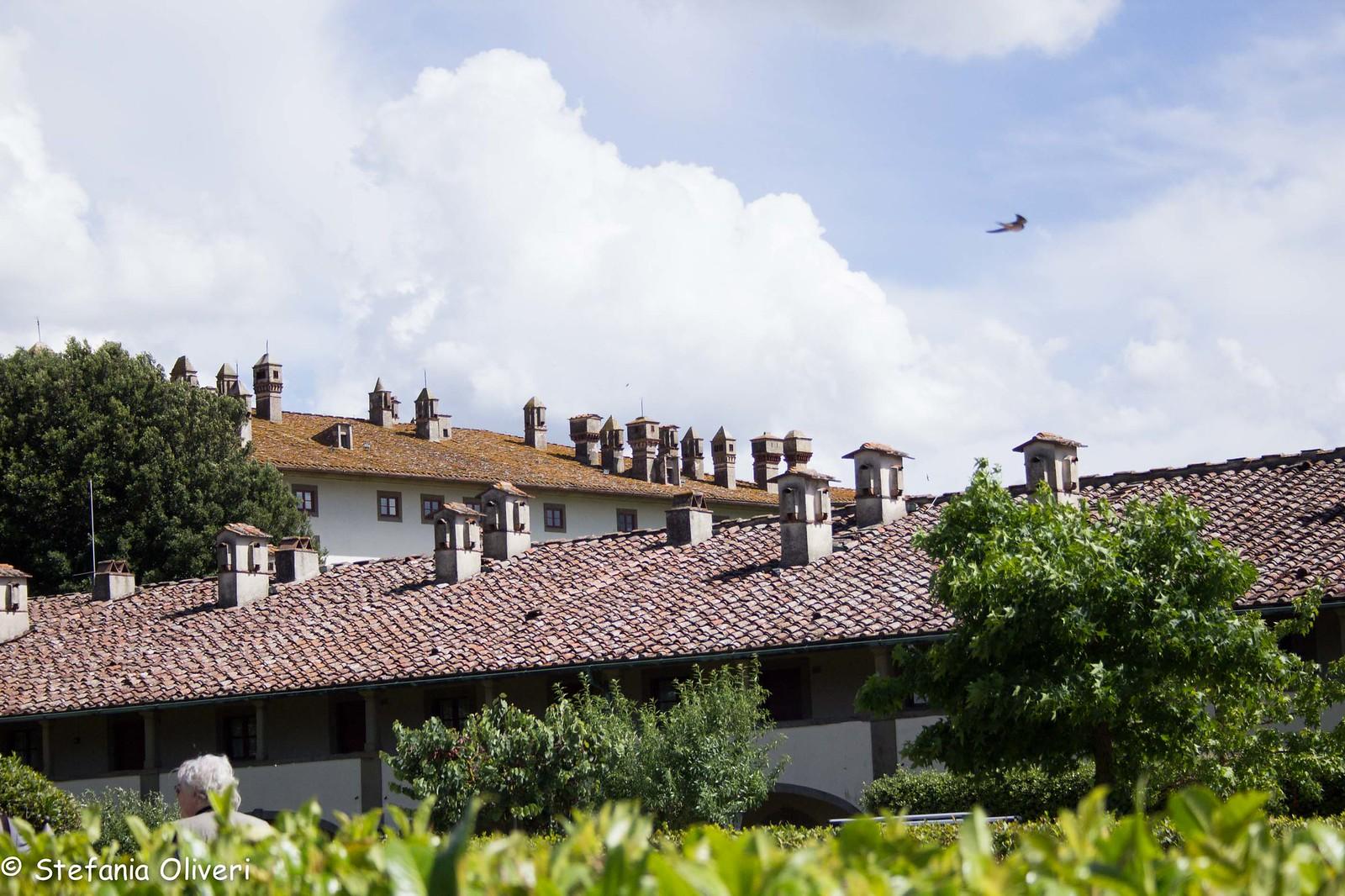Prato Villa Artimino 2