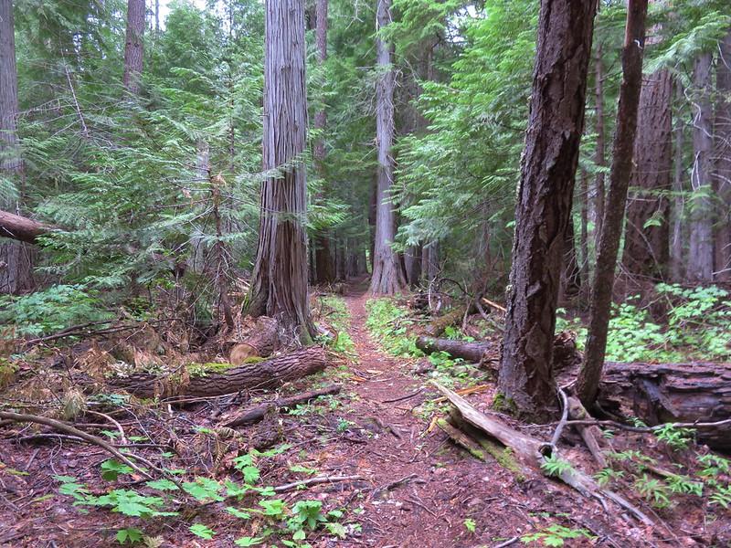 Fifteenmile Trail