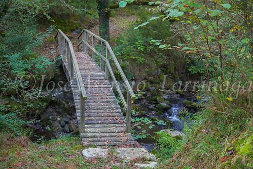 Ruta de la castaña o kirikinausiak #DePaseoConLarri #Flickr      -1499