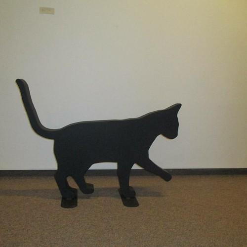 Shadowcat #pei #summerside #eptekcentre #cats #heavymetal #ericschurman #catsofinstagram #caturday
