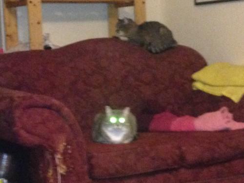 Green-eyed demons
