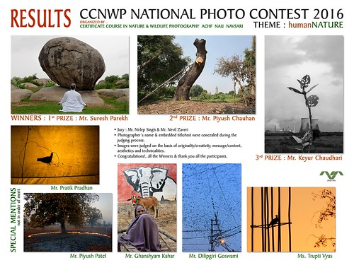 CCNWP photography contest RESULT