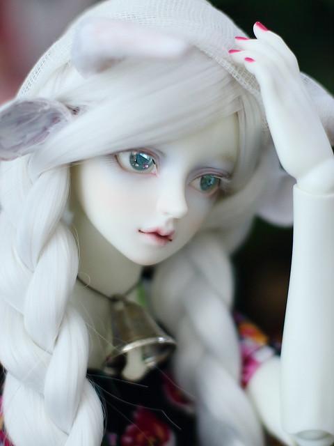 IMG_9051