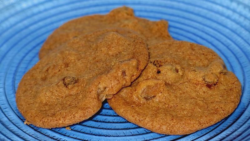 Trader Joe's Gluten Free Ginger Chunk Cookies