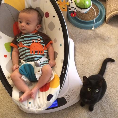Baby Ezra and Martha #cat