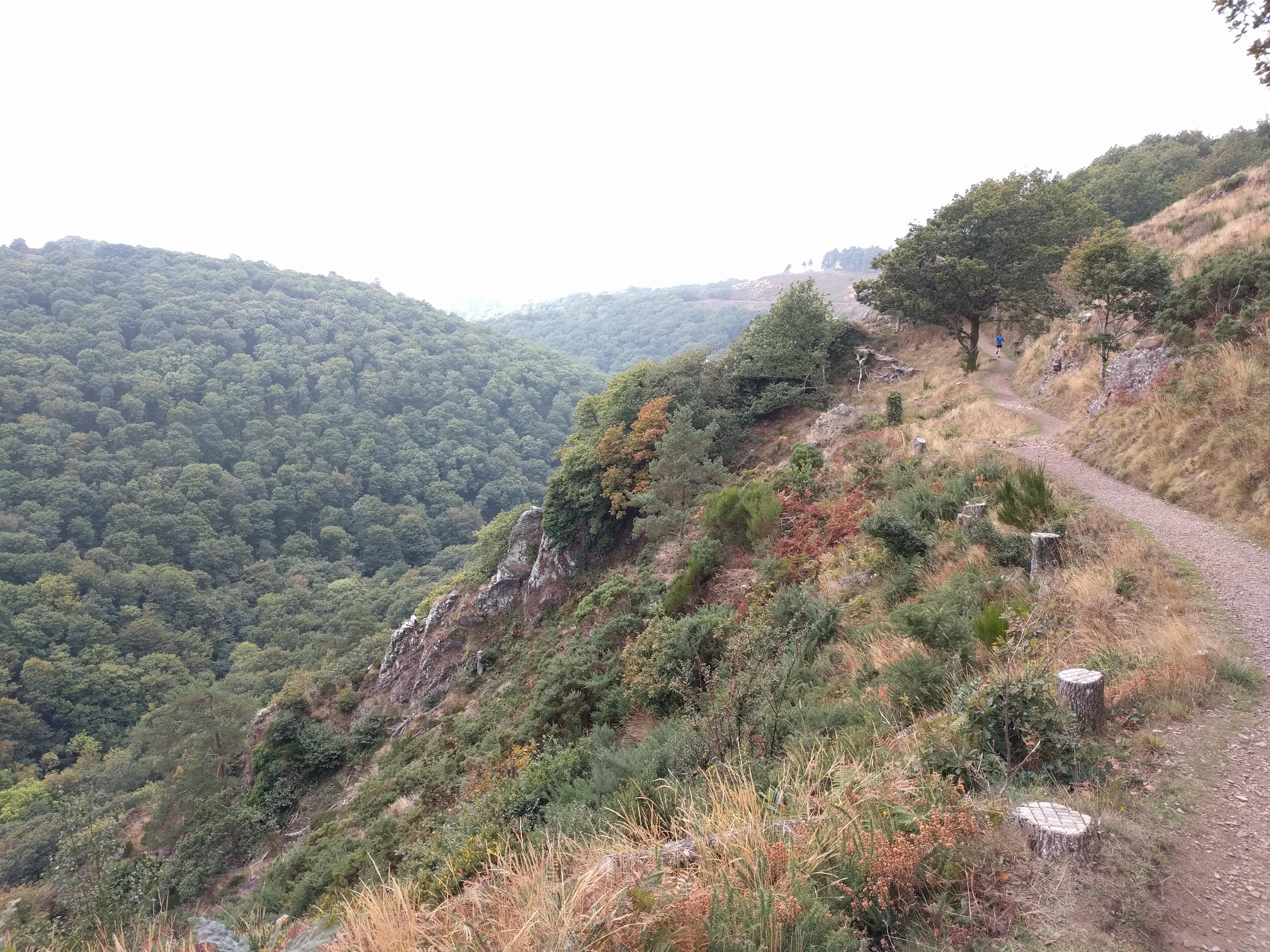 Sharp Tor, Castle Drogo #sh #twomoorsway