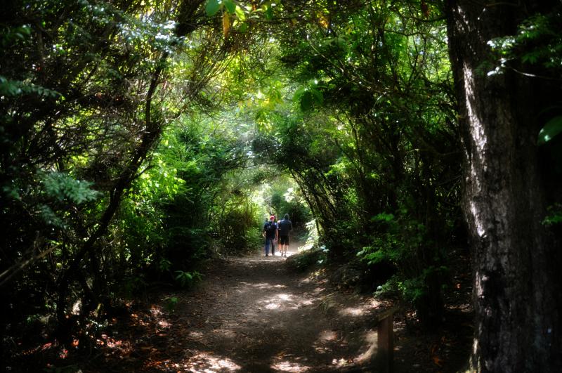 Lake Marie Trail @ Mt. Hope Chronicles