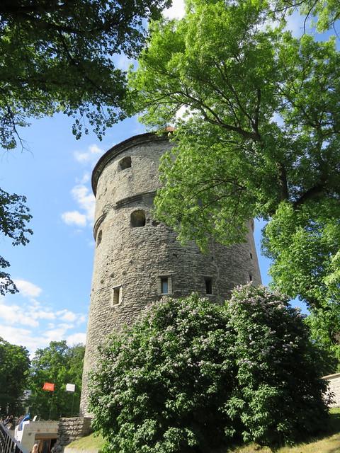 Tallinn Estonia   04062016_011