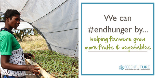 We can #endhunger by helping farmers grow more fruits and vegetables