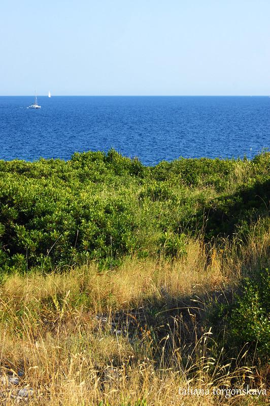 Вид в сторону открытого моря
