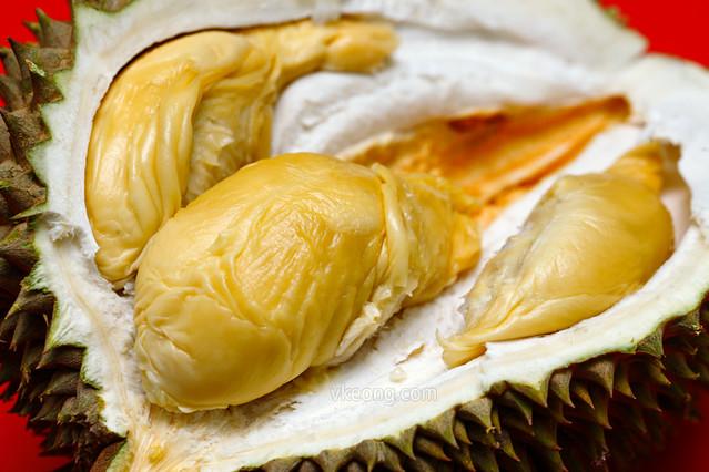 Musang Queen Durian Trakka