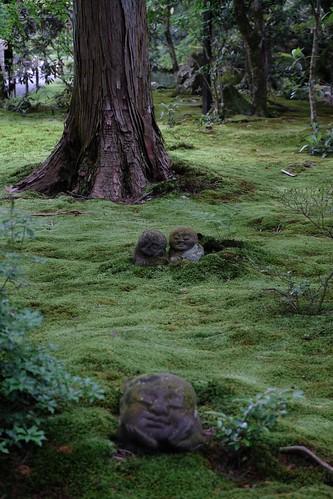 緑深き静寂の境内を巡り、阿弥陀三尊坐像を詣でる