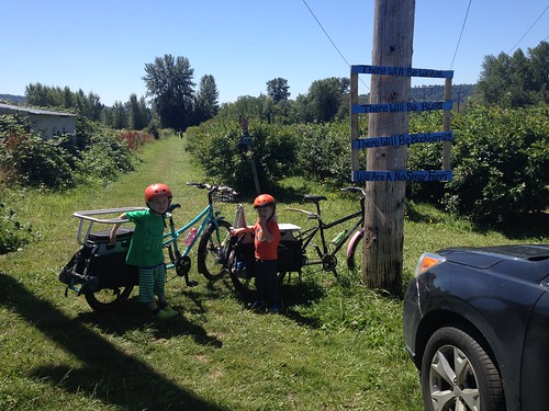 Bikes and Blueberries
