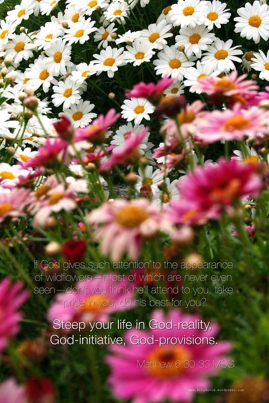 God's Flowers
