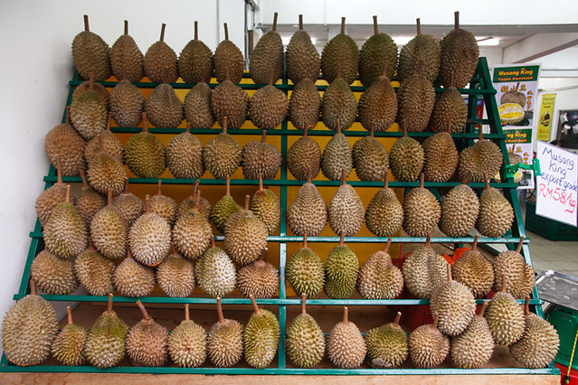 Musang King Durian Export Grade