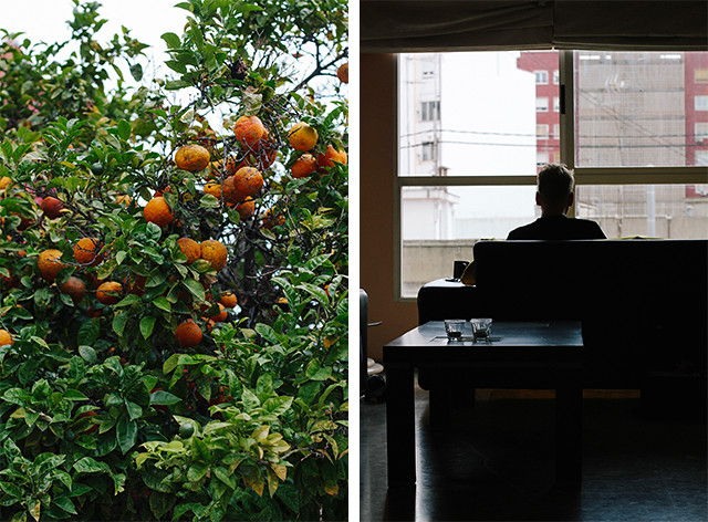 Valencia_Orangen_H, The Curly Head, thecurlyhead, amelie, travel diary, fotoblog, reisetagebuch, spanien, valencia, spain, visual diary, fotografie, photography