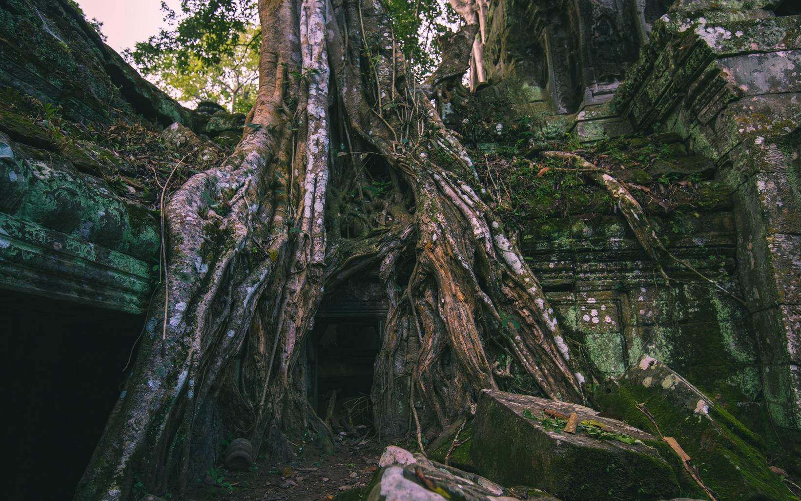 Angkor Wat etc.-13