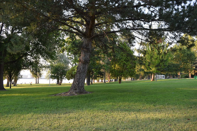Hood Park, Burbank, WA