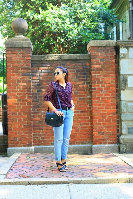 Day in DC Tanvii.com 5