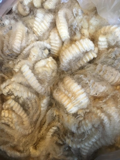 Romney Lamb's fleece