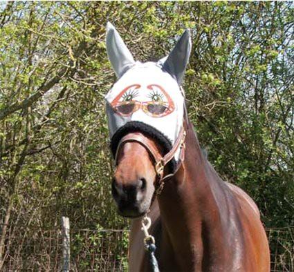 masques anti mouche