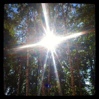 Saturday sun, for #365days project, 240/365