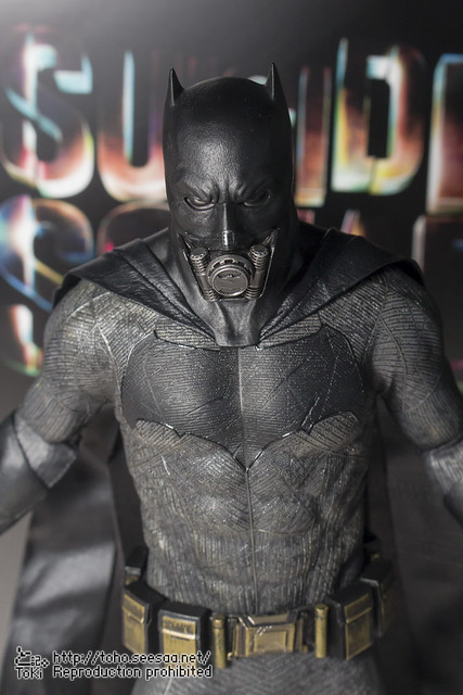 BATMAN100_HotToys_2-218