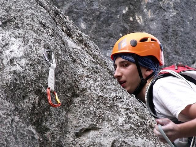 Hohe Wand Junge Füchsin 235 m (7)