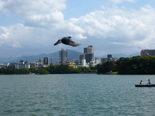 Jp16-Fukuoka-Lac-Parc Ohori (2)