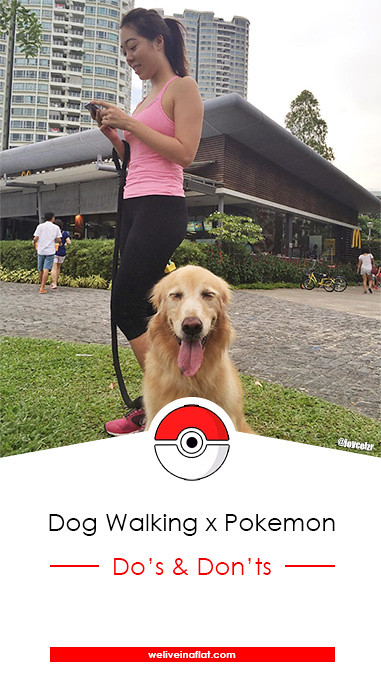 pokemon-go-sg-golden-retriever-pinterest